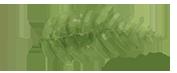 Ville of Plants Logo